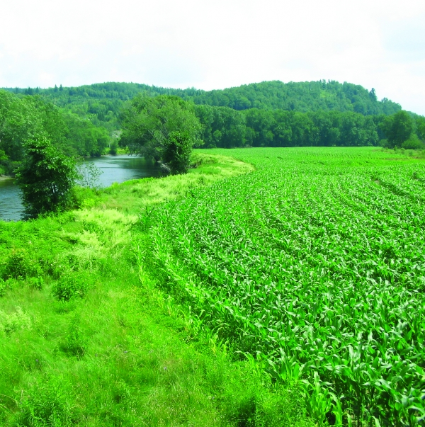 conserved farmland in Canaan